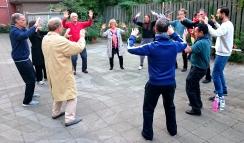 Chi Kung (QI Gong) les Cosima Scheuten