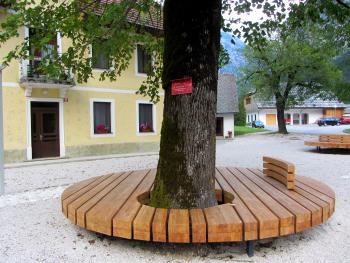 Chi Kung (Qi Gong) vakantie in Slovenie, copyright foto @ Cosima Scheuten
