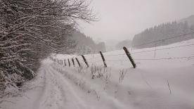 DSC_8599 prachtig landschap sneeuw